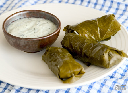 Dolmades and mint yoghurt on a plate